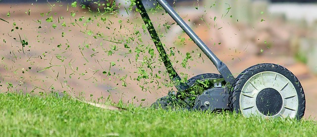 Five Spring Lawn Care Tips